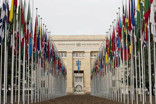 Flags of the 193 UN Member States outside the Palais des NationsCredit: UN Photo / Jean-Marc Ferré