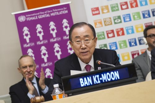 """""""Mobilizing to Achieve the Global Goals through Elimination of Female Genital Mutilation by 2030"""""""