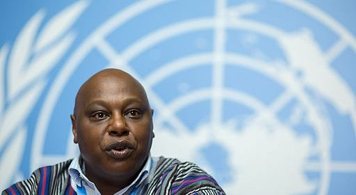 UN Special Rapporteur Maina KiaiCredit: Guyinnairobi photos via Wikimedia Commons